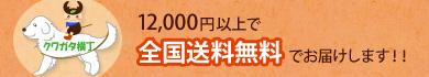 (北海道・沖縄は、20,000円以上で送料無料)